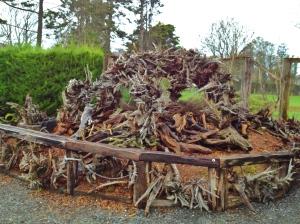 stumpery